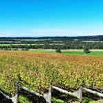Packwood Wine Estate